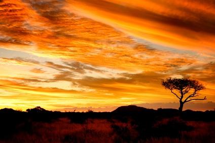 Work and Travel Südafrika